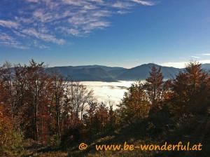 Blick über das Nebelmeer - wo das Glück grenzenlos ist